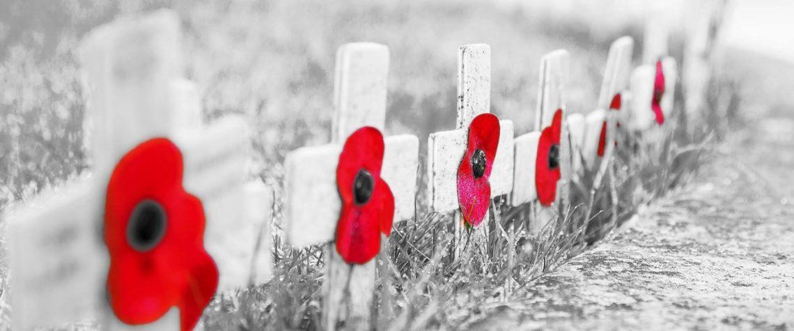 remembrance_day_e01a9eb2-a83e-4ba3-a7c4-656478743cf8